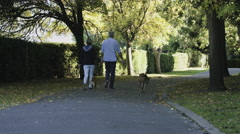 Retired Senior Couple walking in Park with dogs - stock footage