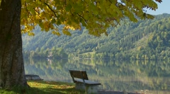 Park bench unoccupied with lake water view autumn fall leaves Stock Footage
