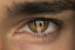 Man Eye with a Reflection of a Sexy Woman Stock Illustration