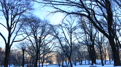 Central Park in Winter with Snow Stock Footage