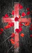 Remembrance Day - wooden cross with poppies and barb wire Stock Photos