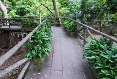 Lonely bridge - stock photo