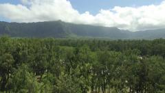 Waimanalo Beach Reveals Hawaii Mountains Behind Trees Stock Footage