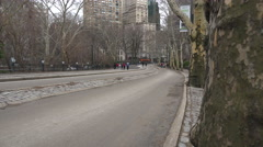 Horse drawn carriages move through Central Park in New York city. Stock Footage