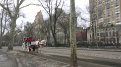 Horse drawn carriages move through Central Park in New York city. - stock footage
