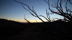 Motion Control Time Lapse of Sunrise over Desert Trees Stock Footage