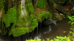 Timelapse Shot of the Unique Bigar Waterfall in Romania Stock Footage