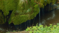 Static Low Angle Shot of the Unique Bigar Waterfall in Romania Stock Footage