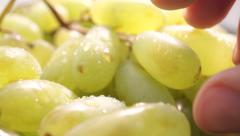 Man fingers ripping off green grape, macro video Stock Footage