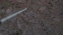 White stick and dog Stock Footage
