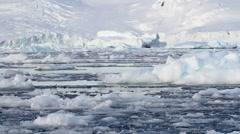 Iceberg in Antarctica Stock Footage