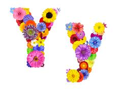Flower Alphabet Isolated on White - Letter Y - stock photo