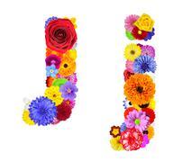 Flower Alphabet Isolated on White - Letter J Stock Photos