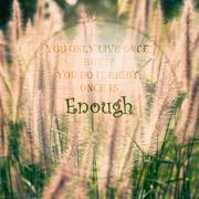 Meaningful quote on blurred meadow background Stock Illustration