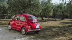 Fiat 500 decorated for a wedding Stock Photos