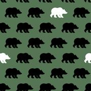 White Bear and Grizzly seamless pattern. Background of wild animals Stock Illustration