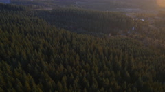Aerial shot of Oregon Forest: 4K Ultra HD - stock footage