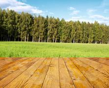 Green field under blue sky. Wood floor - stock photo