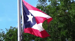Flag of Puerto Rico. Stock Footage