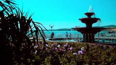 GELENDZHIK, RUSSIA - Birds are flying around the fountain Stock Footage