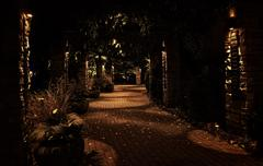 A dark and quiet brick pathway lined with stone pillars and a trellis at night Stock Photos