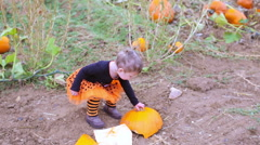 Cute baby girl picking her pumpkin for Halloween. Stock Footage