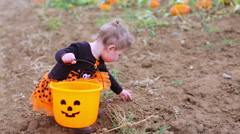 Toddler in Halloween costume playing at the pumpkin patch. Stock Footage