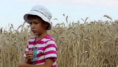 Boy with wheat culm in a wheat field Stock Footage