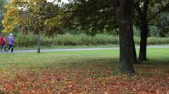 Senior women have hiking workout in autumn urban park. Stock Footage
