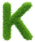 Stock Illustration of Vector capital letter K from grass on white background