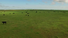 Aerial South Dakota Countryside Stock Footage