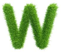 Vector capital letter W from grass on white background - stock illustration