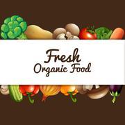 Poster design with fresh vegetables - stock illustration