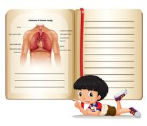 Boy and book of human anatomy Stock Illustration
