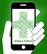 Kidney Failure Indicates Lack Of Success And Affliction Stock Illustration