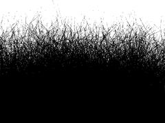 Fur hair grass gradient in black over over white - stock illustration