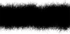 Horizontal black hair furr grass line over white Stock Illustration
