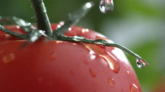 Extreme close-up of water drip on tomato in slow motion; shot on Phantom Flex 4K - stock footage