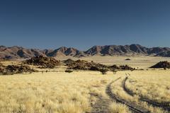 Namib Desert, Namibia, Africa - stock photo