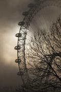 London Eye, London, England, United Kingdom, Europe Kuvituskuvat