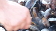 Fried Mussel In Hot Plate - stock footage