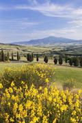 Tuscan landscape  with Monte Amiata, near Pienza, Val d'Orcia (Orcia Valley), - stock photo