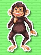 Little chimpanzee smiling alone Stock Illustration