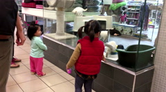 A pet store with people surrounding inside shopping mall Stock Footage