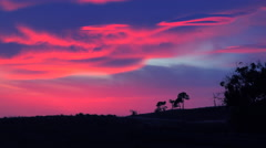 A beautiful otherworldly sunrise or sunset along the California coast with a Stock Footage