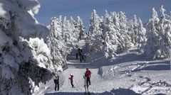 4K People Learning Ski in Mountains Winter Sports View Tourists Skiing in Alps - stock footage