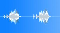 Wild turkey 3 Sound Effect