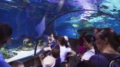 Aquarium hallway / walkway in Legoland, Denmark Stock Footage