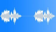 Wild turkey 39 Sound Effect