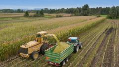 4K Aerial: Corn Silage Harvesting Stock Footage